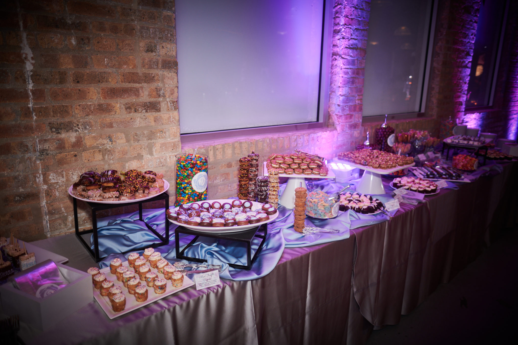 Sienna's Bat Mitzvah at Anshe Emet and Architectural Events